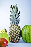 Tropical Fruits Stock Images