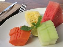 Tropical fruits assorted, resort breakfast. A photo showing the neatly cut and arranged variety of delicious tropics fruit on a plate. Served as breakfast in a stock image