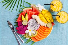 Tropical fruits assortment on a white plate with palm tree leaf with mango smoothie. Top view. Copy space. Tropical fruits assortment on a white plate with palm Royalty Free Stock Images