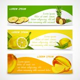 Tropical fruits banner set vector illustration