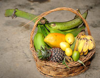 Tropical Fruits Basket. Close up of Tropical Fruits Basket Stock Image