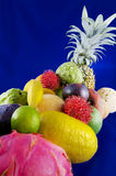 Tropical fruits on blue background. Assortment of various tropical fruits on a blue background Stock Image