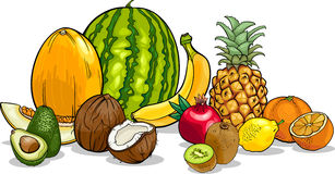 Tropical fruits cartoon illustration Stock Image