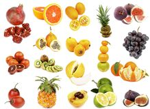 Tropical Fruits Collection Stock Photography