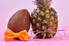 Tropical fruits with fashion accessories. royalty free stock image