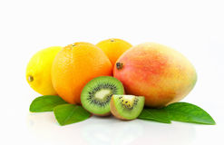 Tropical fruits group Stock Images