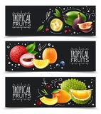 Tropical Fruits Horizontal Banners vector illustration
