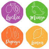 Tropical fruits icons on the bright grunge background. Royalty Free Stock Image