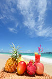 Tropical fruits with juice Royalty Free Stock Images
