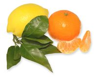 Tropical fruits with leaves. Tangerine, lemon and greens on white background Stock Photos