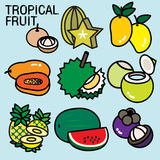 TROPICAL FRUITS. List of fruit contains the name of fruits are cultivated mostly in countries with warm climates. Mostly they are considered edible in some Royalty Free Stock Images