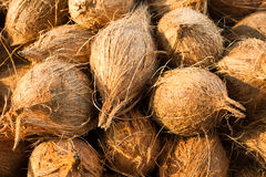 Coconuts. Tropical fruits natural background. Fresh coconuts at market place Royalty Free Stock Photography