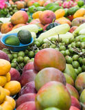 Tropical Fruits at Outdoor Market. A row of tropical fruits such as mango, sour orange and huaya at an outdoor market in Merida, Mexico royalty free stock photos