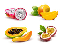 Tropical Fruits Realistic Set Royalty Free Stock Photo