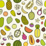 Tropical fruits seamless pattern. Vector hand drawn illustration Stock Photos