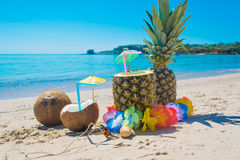 Tropical fruits by the shore Royalty Free Stock Image
