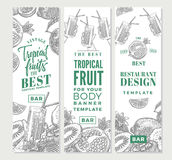 Tropical Fruits Sketch Vertical Banners vector illustration