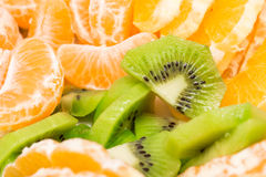 Tropical Fruits Slices Mix Stock Photos