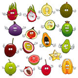 Tropical fruits with smiling and happy faces. Tropical cartoon fruits with smiling and happy faces and raised hands. Exotic feijoa and fresh fig, raw pitaya and Stock Photography