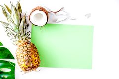 Tropical fruits for summer design on white background top view m Stock Images