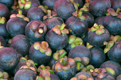 Tropical fruits Sweet taste purple shell Stock Photography