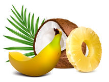 Tropical fruits vector illustration Royalty Free Stock Photos