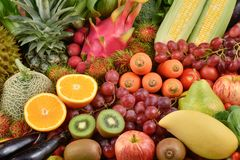 Tropical fruits and vegetables organics Stock Images