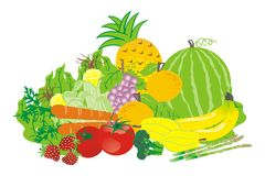 Tropical Fruits and vegetables vector. Vector illustration of tropical fruits and vegetables on white isolated Stock Images