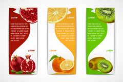 Tropical fruits vertical banner set Stock Images
