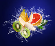 Tropical fruits in water drops Stock Images