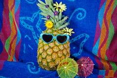 Tropical Fun Stock Photography