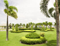 Tropical Garden Stock Images