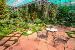 Tropical garden. With small table and chairs Stock Photography