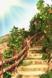 Tropical garden Royalty Free Stock Photography