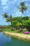 Tropical garden Stock Photos