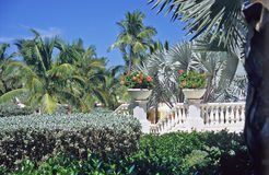 Tropical Garden. A garden of palms and tropical flowers greets visitors to Great Exuma Island in the Bahamas royalty free stock photo