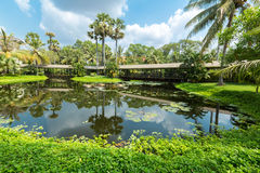 Tropical Garden And Small Water Pond In Siem Reap, Cambodia Royalty Free Stock Image