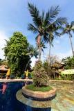 Tropical Stock Photo