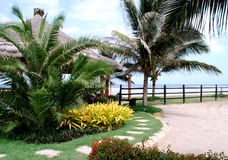 Tropical Garden In The Beach Stock Photos