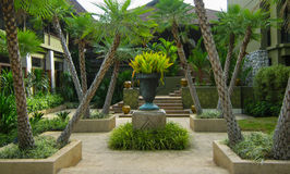 Tropical Garden in a Beach Resort Royalty Free Stock Photo