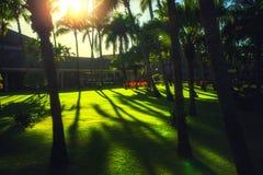 Tropical garden at a Caribbean resort hotel in Punta Cana, Dominican Republic stock photo