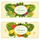 Tropical garden fruits banners. With vector carambola, mangosteen, durian, figs, guava, rambutan and tropical plant palm leaves elements. Fruit decoration Royalty Free Stock Image