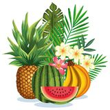 Tropical garden with fruits. Vector illustration design fruits, leaves and flowers, summer and exotic concept Royalty Free Stock Photography