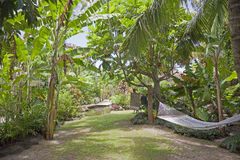 Tropical Garden with Hammock Stock Photos