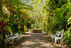 Tropical Garden. Hell-Bourg, Maison Folio, Reunion - Tropical Garden with benches, flowers, trees and a fountain Stock Photos