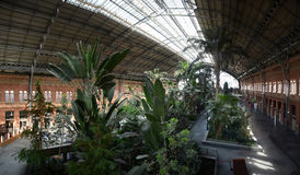 Tropical Garden inside Train Station Stock Photography
