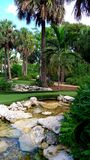 Tropical garden and minigolf course in Florida royalty free stock photos