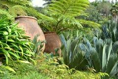 Tropical garden in Monte Garden Madeira. Tropical garden with old big vases in Monte Palace Tropical Garden Madeira Royalty Free Stock Image