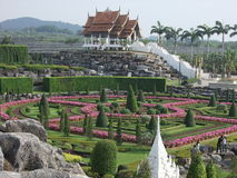 Tropical garden. Nong Nooch Tropical Garden Pattaya, Thailand royalty free stock image