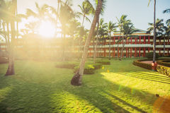 Tropical garden with palm trees and exotic flowers in beach resort stock photography